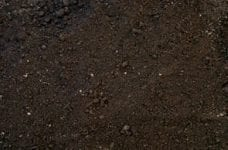 Top Soil Supplied by Saddingtons Building Supplies