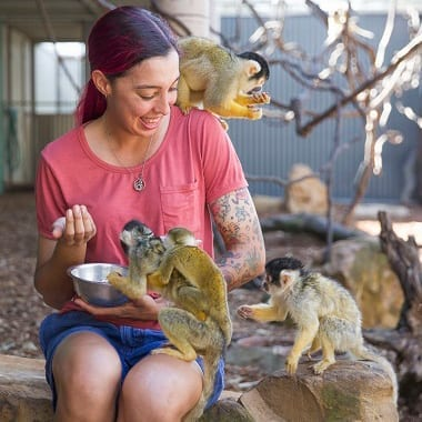 Squirrel Monkey Encounter