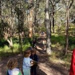 child care nature play sustainable play bush kindy