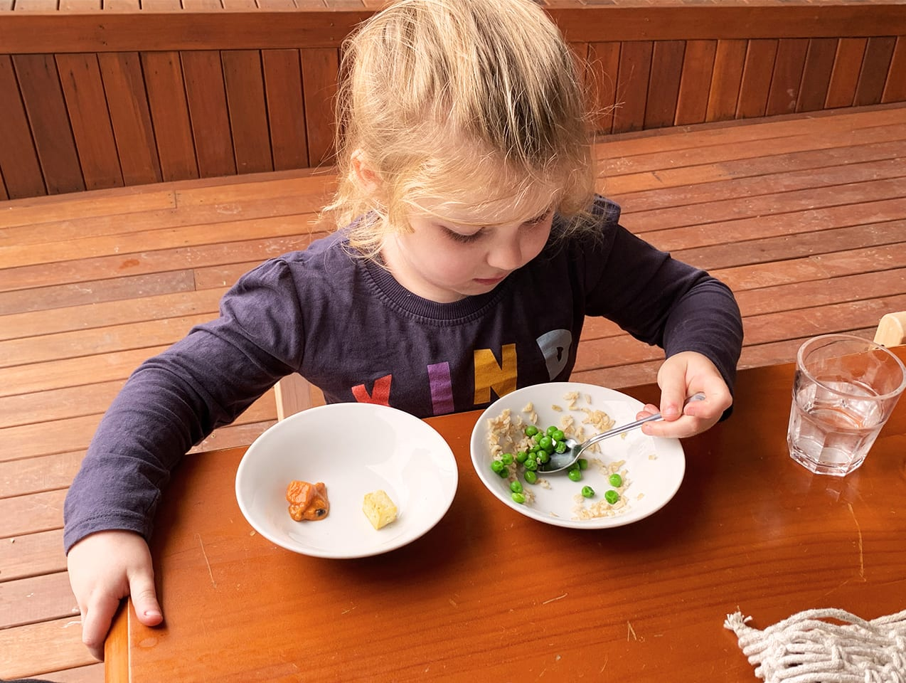 division of responsibility meal times sustainable play