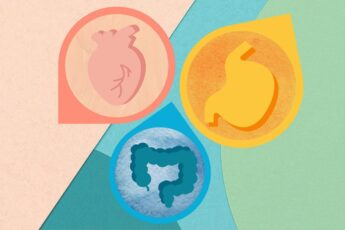 The Link Between Your Gut and Heart Health