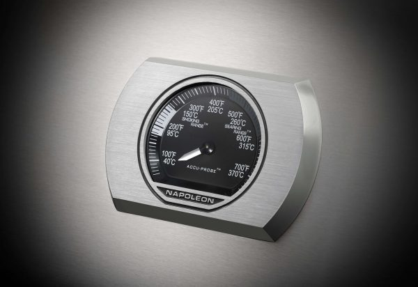 Rogue-1-Details-Thermostat-SS